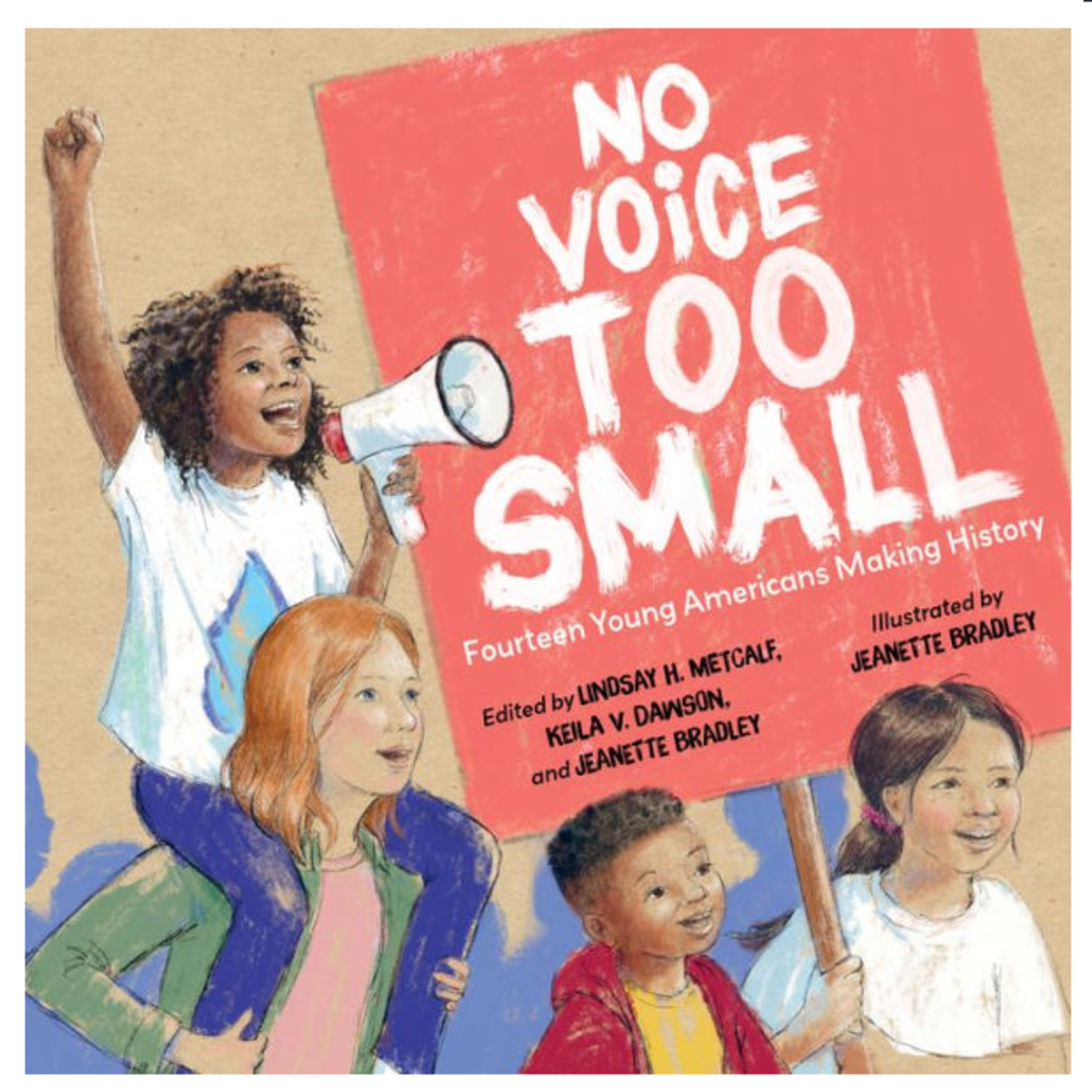 No Voice Too Small - 14 Young Americans Making History