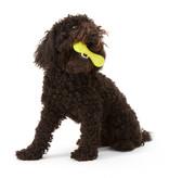 West Paw Zogoflex Hurley Dog Bone
