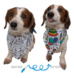 Birthday Color-your-Own Dog Bandana Kit
