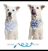 Celebration/Birthday Color-your-Own Dog Bandana Kit