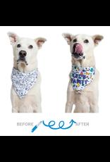 Pet Krewe Celebration/Birthday Color-your-Own Dog Bandana Kit