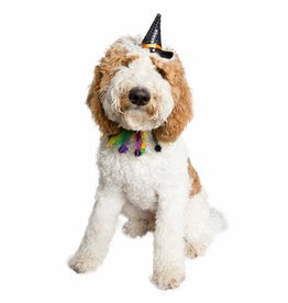 Pet Krewe Dog Halloween Hat & Collar Set