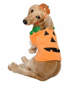 Pet Krewe Halloween Pumpkin Dog Costume
