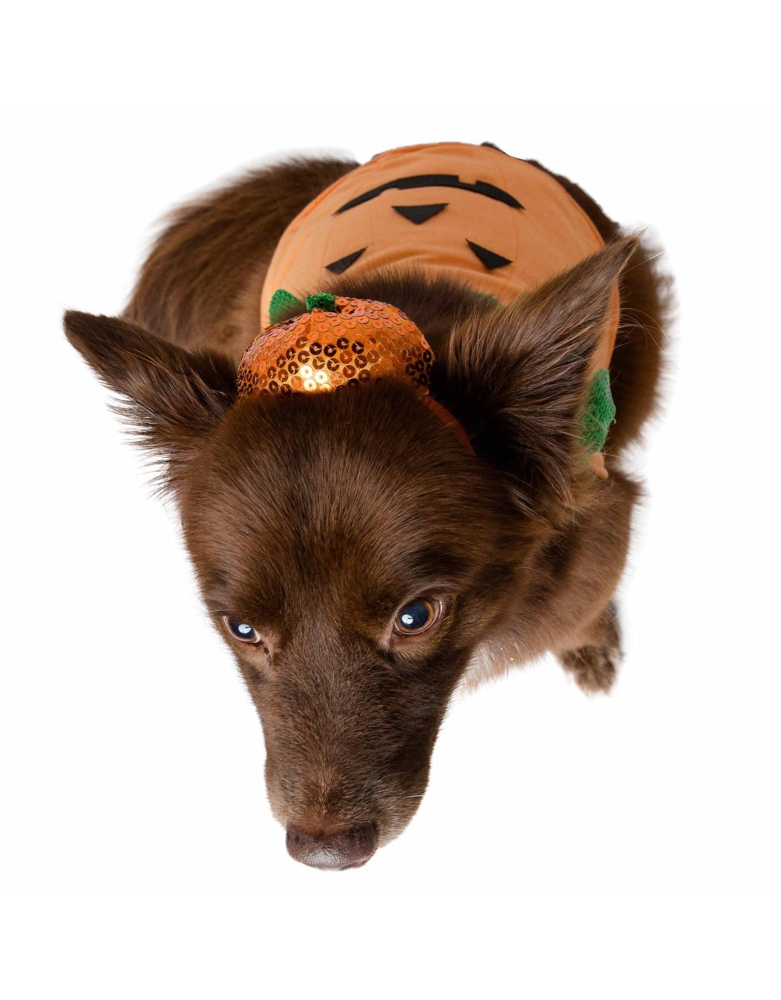 Pet Krewe Halloween Pumpkin Dog Costume