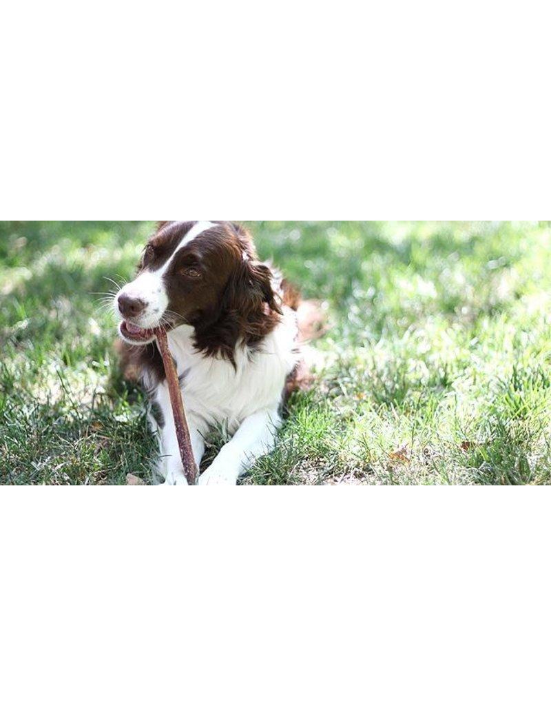 The Natural Dog Company 12in Jumbo Bully Sticks - Odor Free