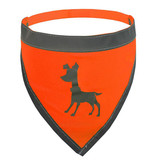 Alcott Visibility Dog Bandana