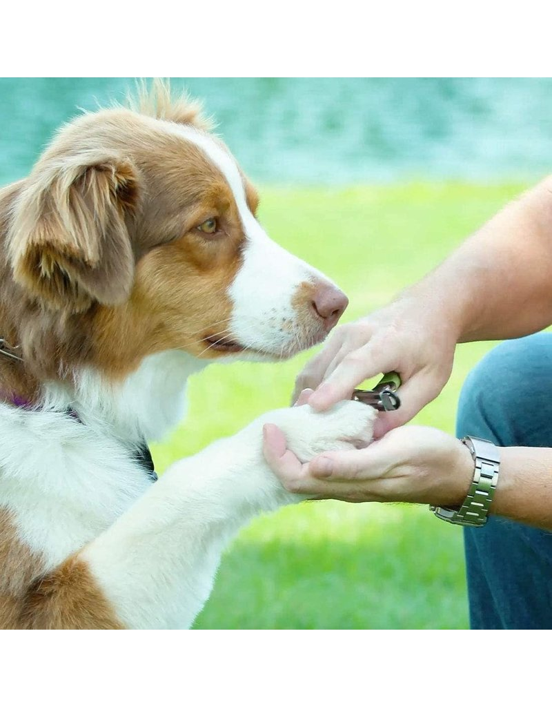 Safari Guillotine Dog Nail Trimmer