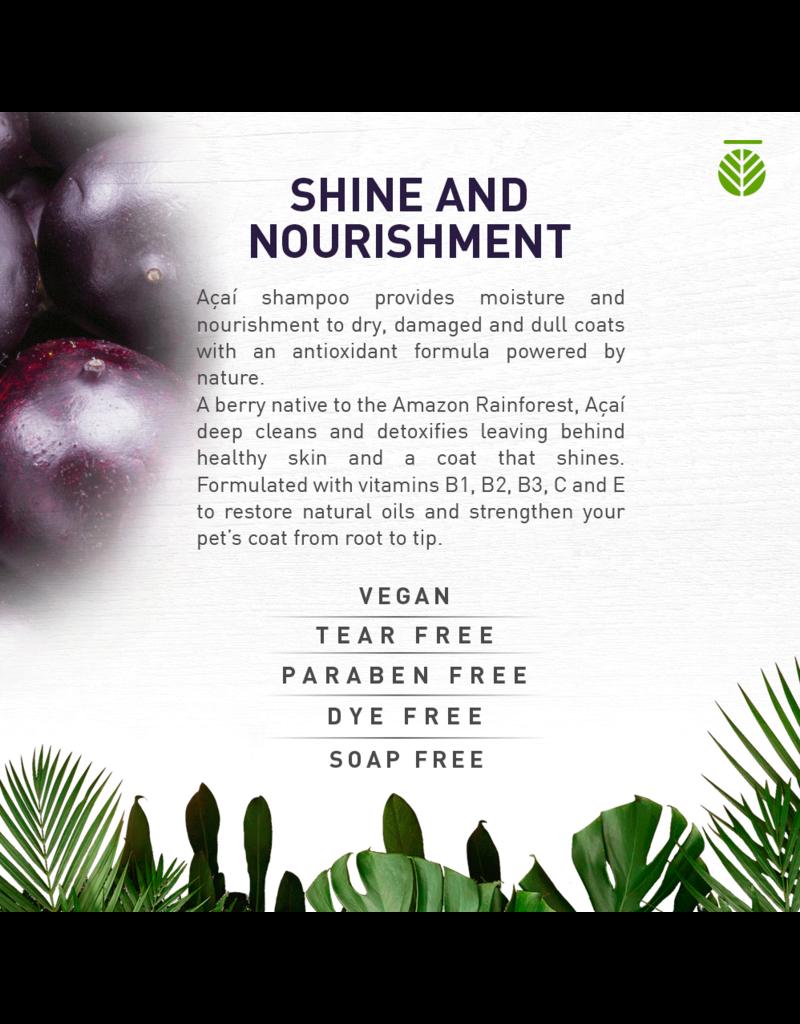Amazonia Pet Care Açaí Shine & Nourishment Shampoo