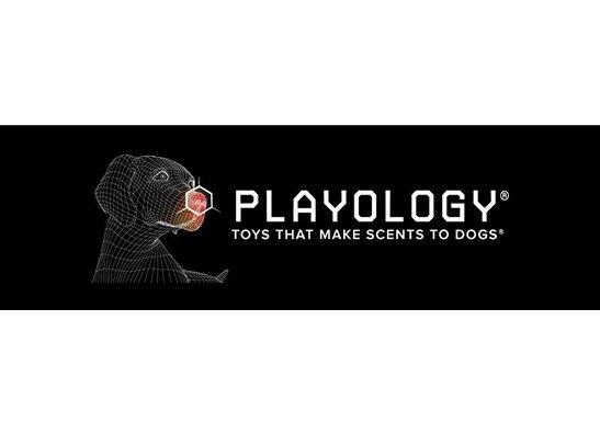 Playology