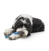 West Paw Seaflex Drifty Dog Bone