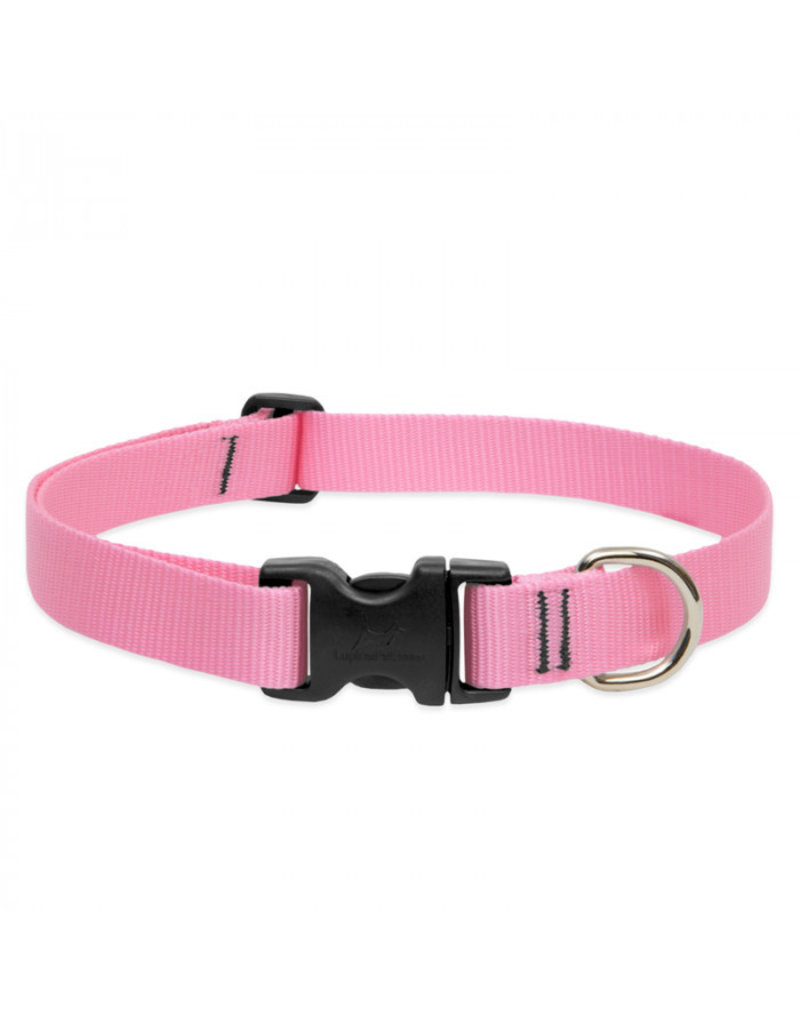 LupinePet  Basic Solids Dog Collar