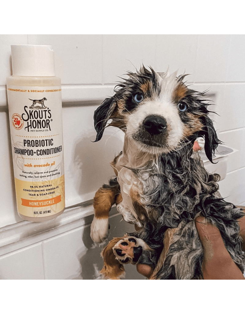 Probiotic Shampoo + Conditioner For Dogs & Cats