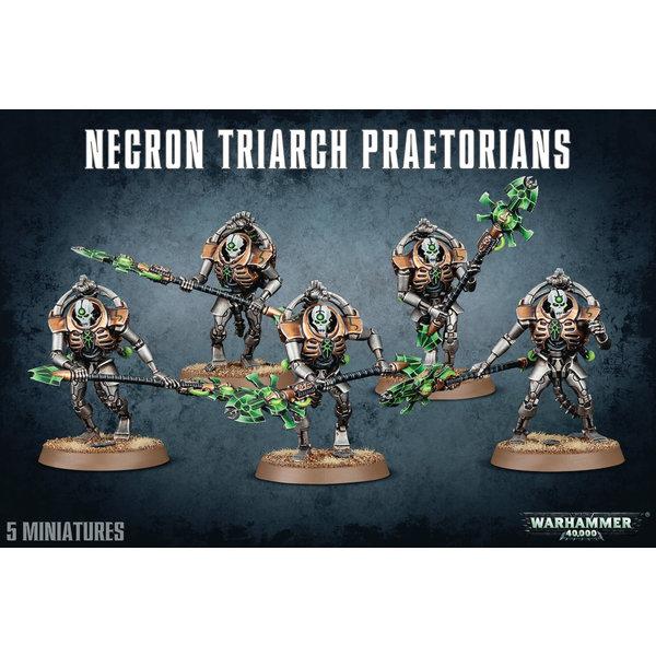 Warhammer 40,000 Necrons: Triarch Praetorians