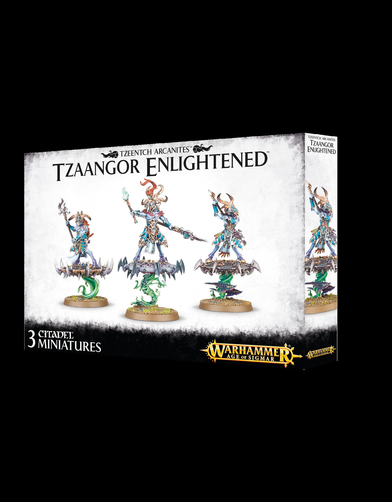 Warhammer Age of Sigmar Tzaangor Enlightened