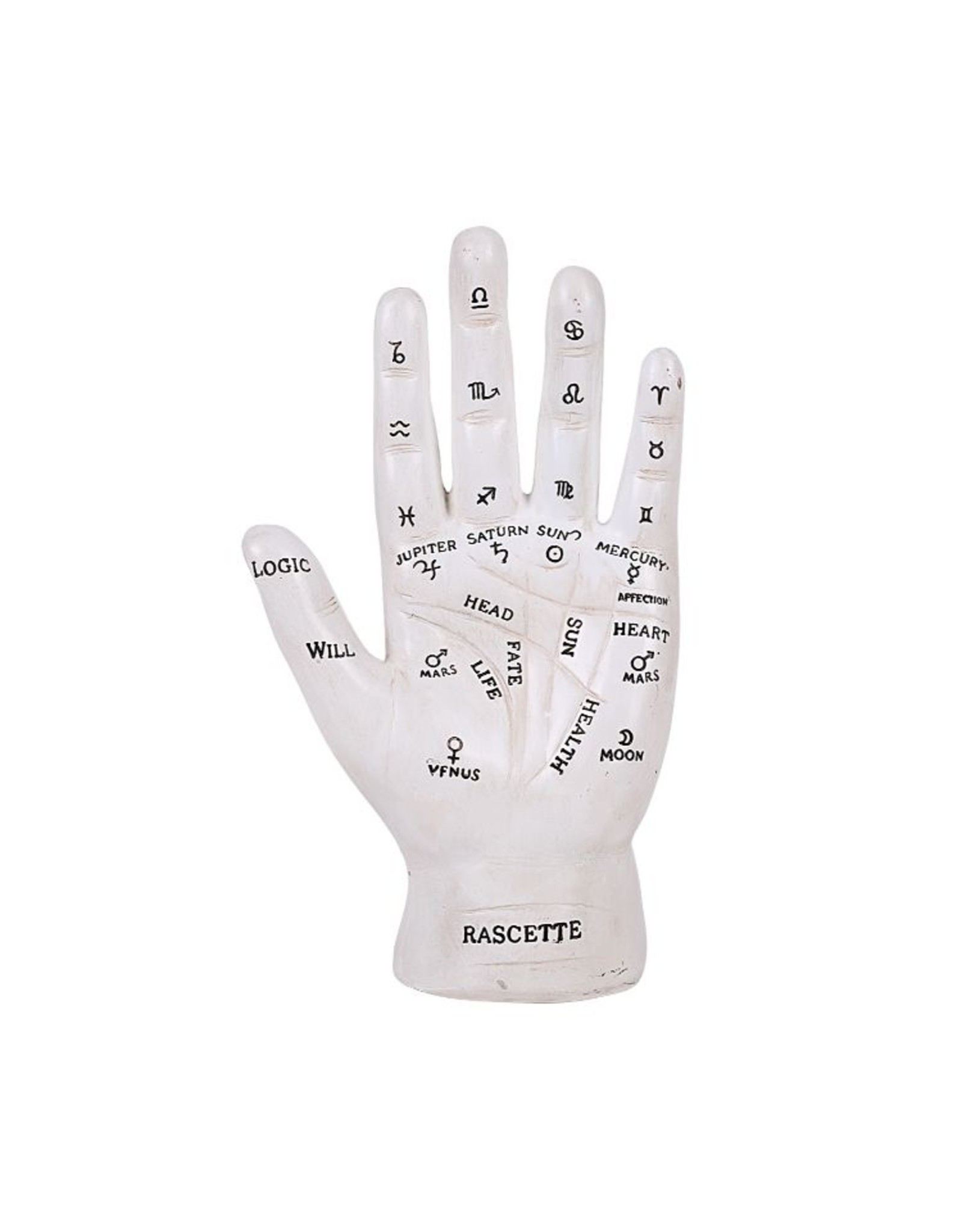 Palmistry Hand in White and Silver Finish