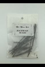 Blackthorn Thorns 15 Quantity