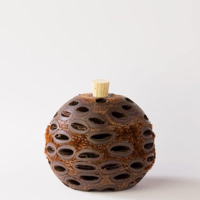 HG Banksia mini scent Pod