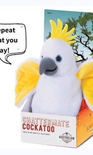 Chattermate Cockatoo