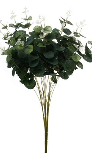 KOCH Eucalyptus Leaf Bush 50cm