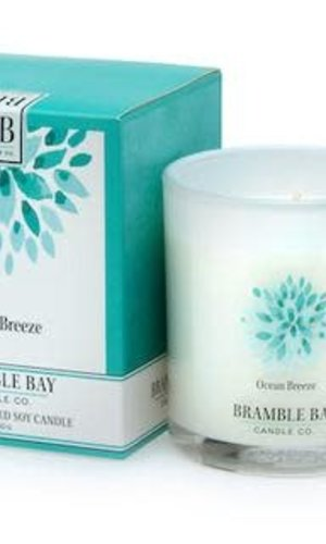 SI 250g Ocean Breeze Candle