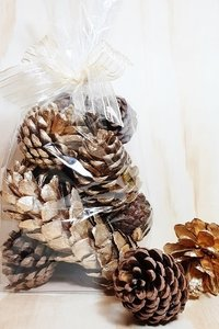 PPI Pine Cones Gold/natural Bag