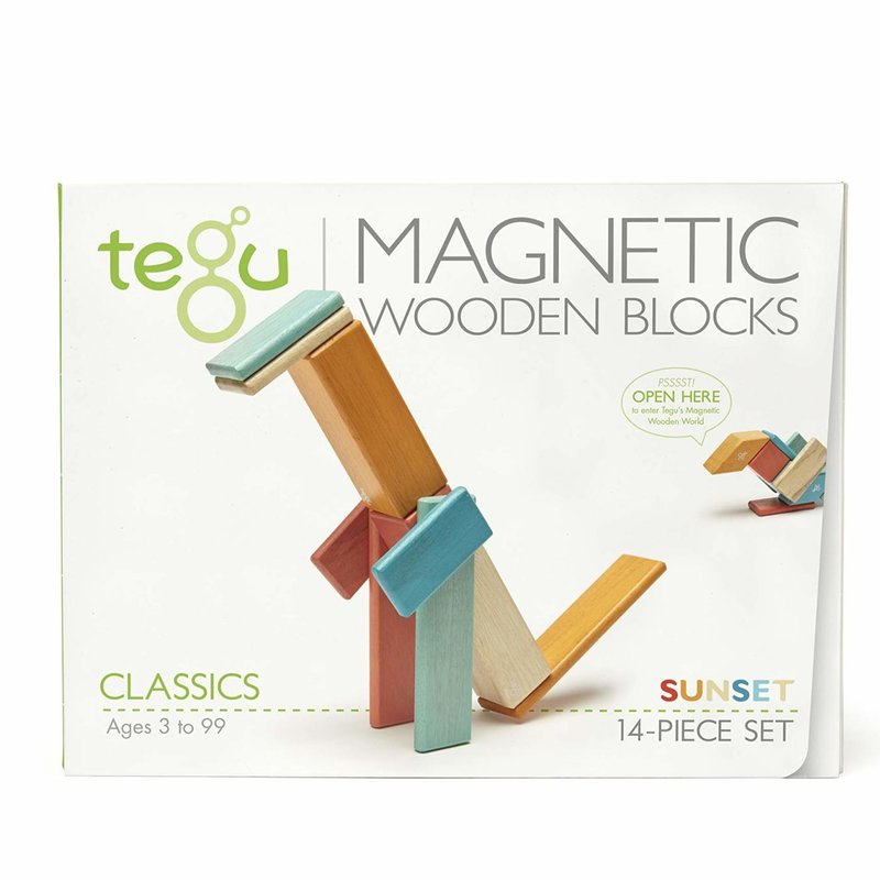 BNP 14 Pce Tegu Magnetic Wooden Blocks