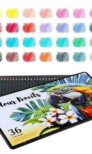 Colour Pencils 36 TIN