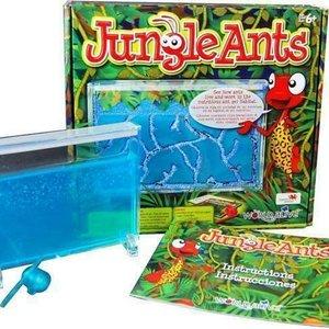 Jungle Ant Habitat World Alive