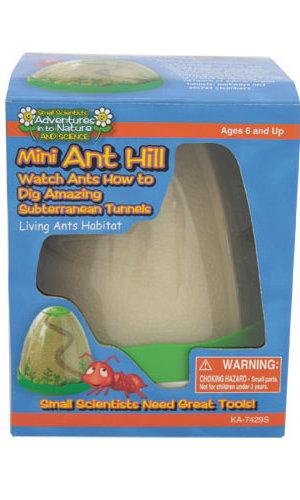 Mini Ant Hill