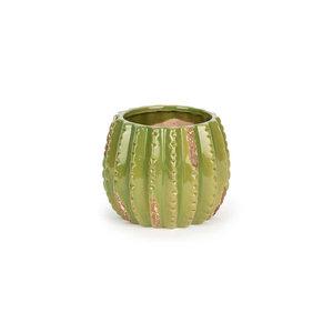 Cactus Pot Medium