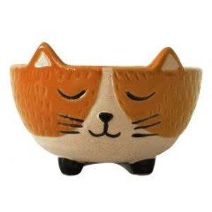 Cat Bowl Orange & Stand Small