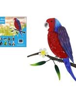 Australian Bird Wall Art Rosella