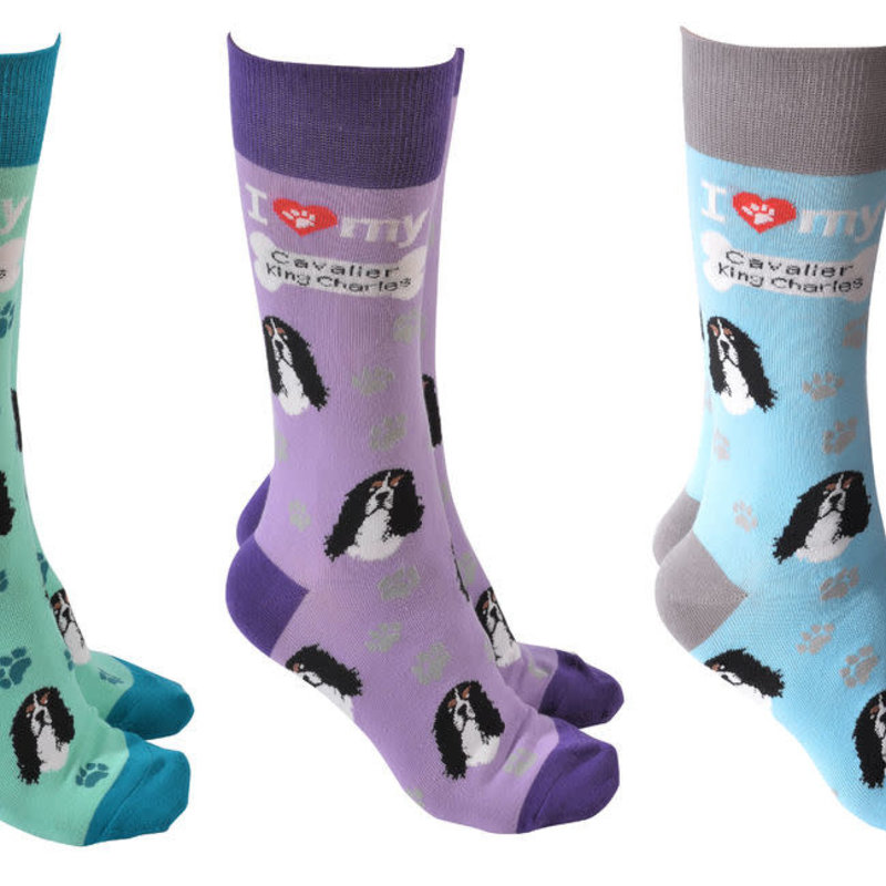Cavalier King Charles Dog Society Socks (assorted)