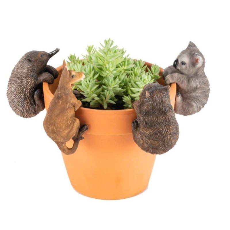 Aussie Animal Pot Sitters