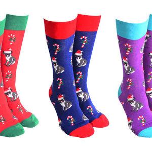Sock Society Xmas Koala (random Selection)
