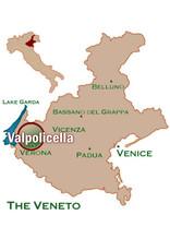 Red- Rare Grapes San Michele Rondinella Veneto Rosso 18
