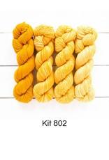 Urth Merino Gradient Kit