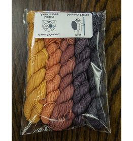 Yarnslayer Fibers Merino Melee, 20g Kit