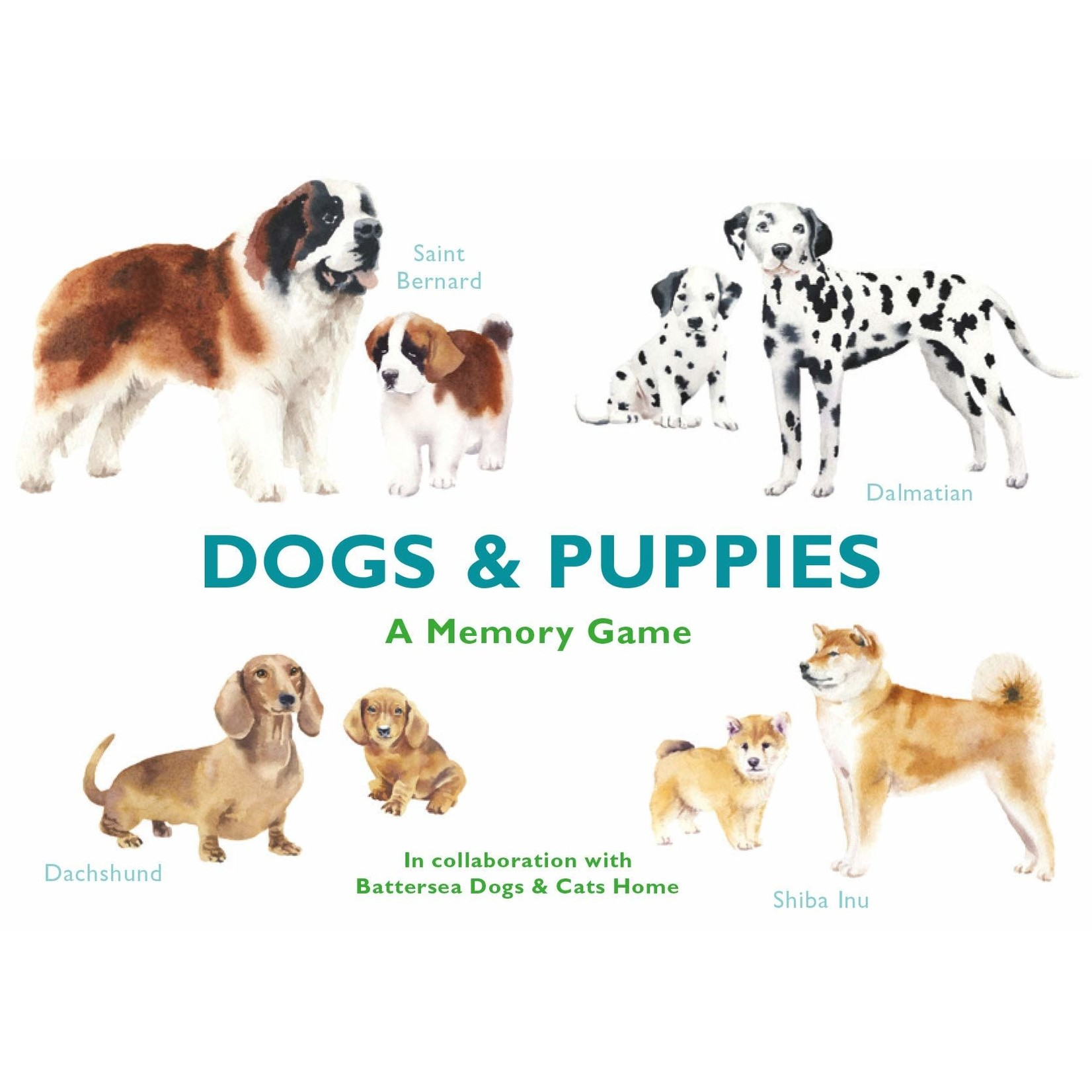 CHRONICLE DOGS & PUPPIES
