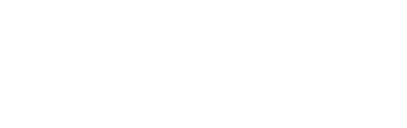 Bicycles Record
