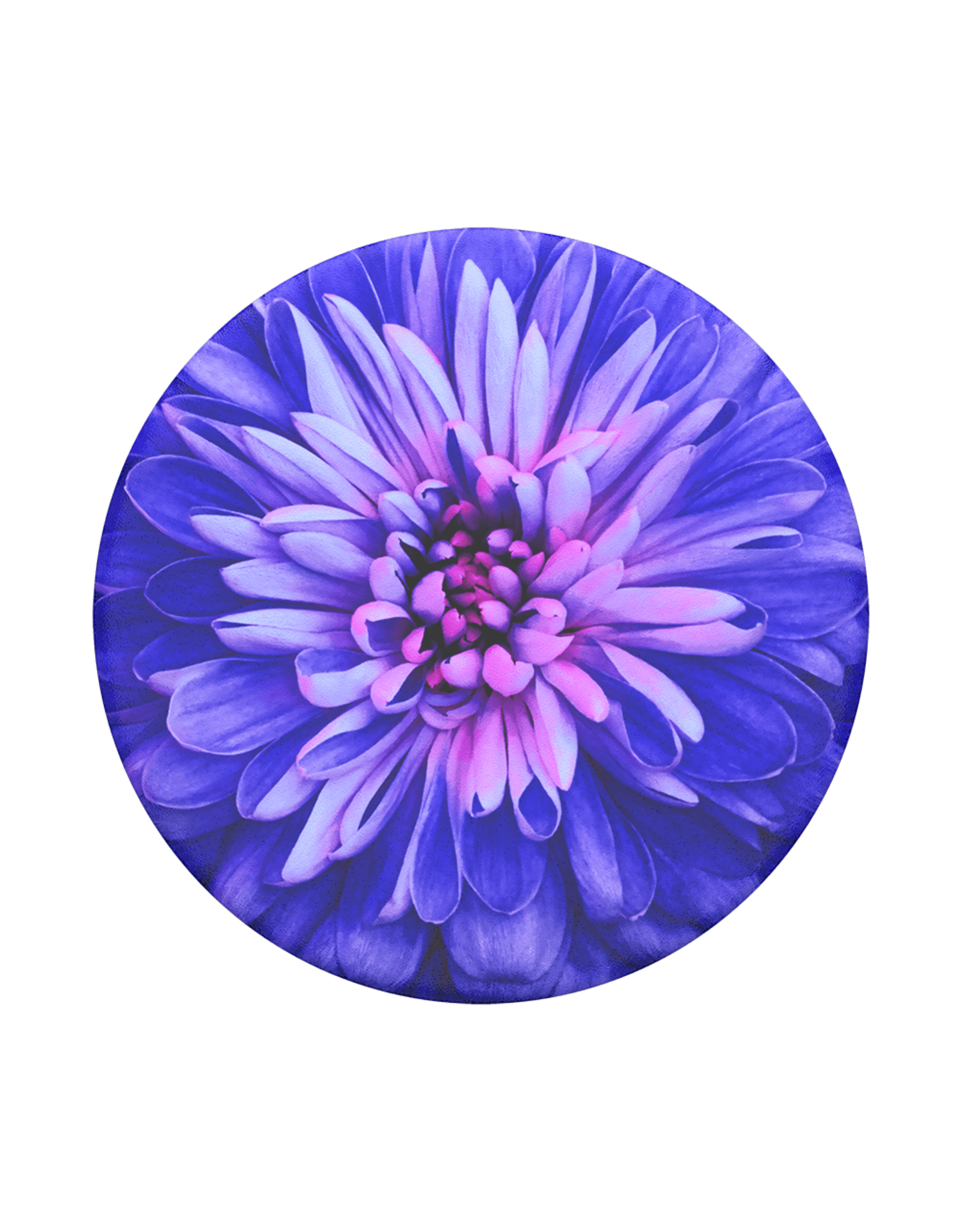PopSockets PopSocket PopGrip Swappable PopTop - Be A Dahlia