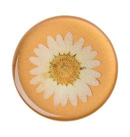 PopSockets Popsockets PopGrip (Gen2) - Press Flower Daisy White