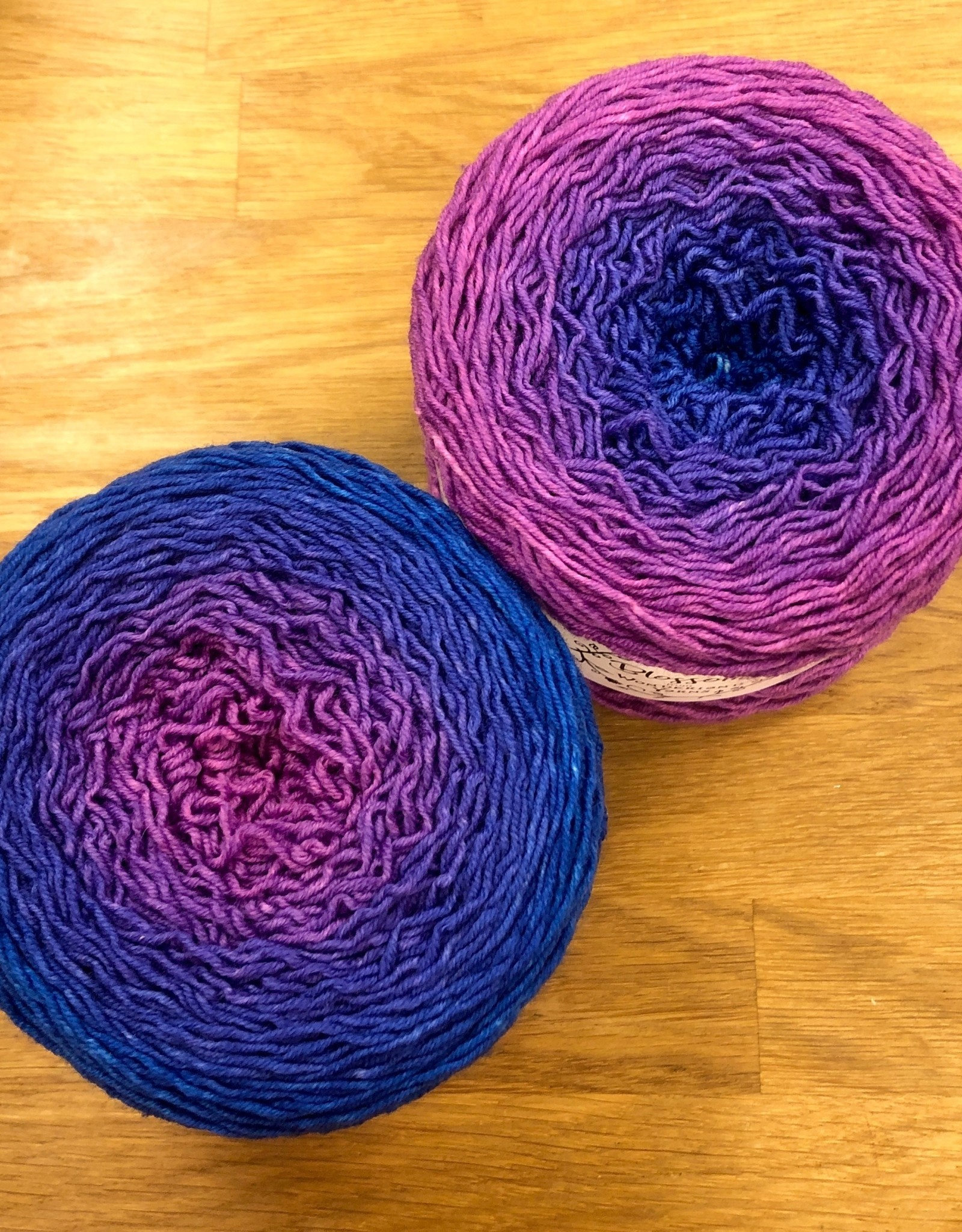 Wonderland Yarn Blossoms Gradients by Wonderland Yarns