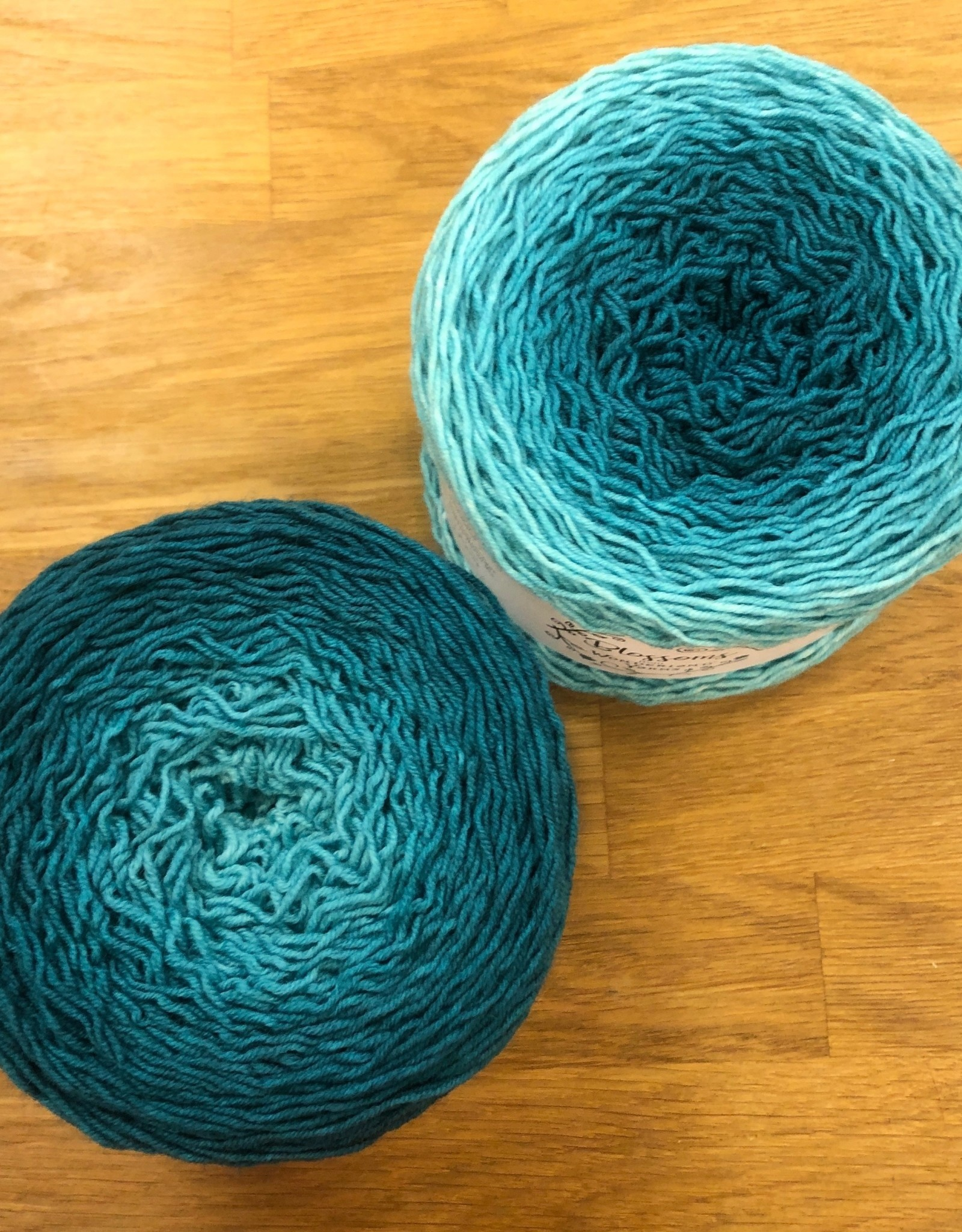 Blossoms Gradients by Wonderland Yarns
