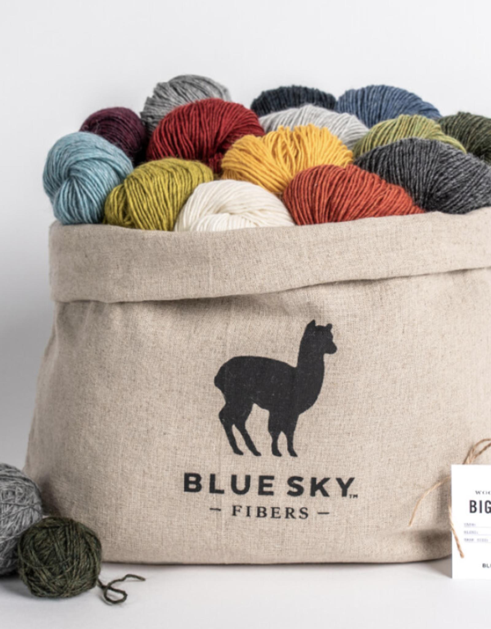 Blue Sky Fibers Woolstok Light 14 Color Big Bundle