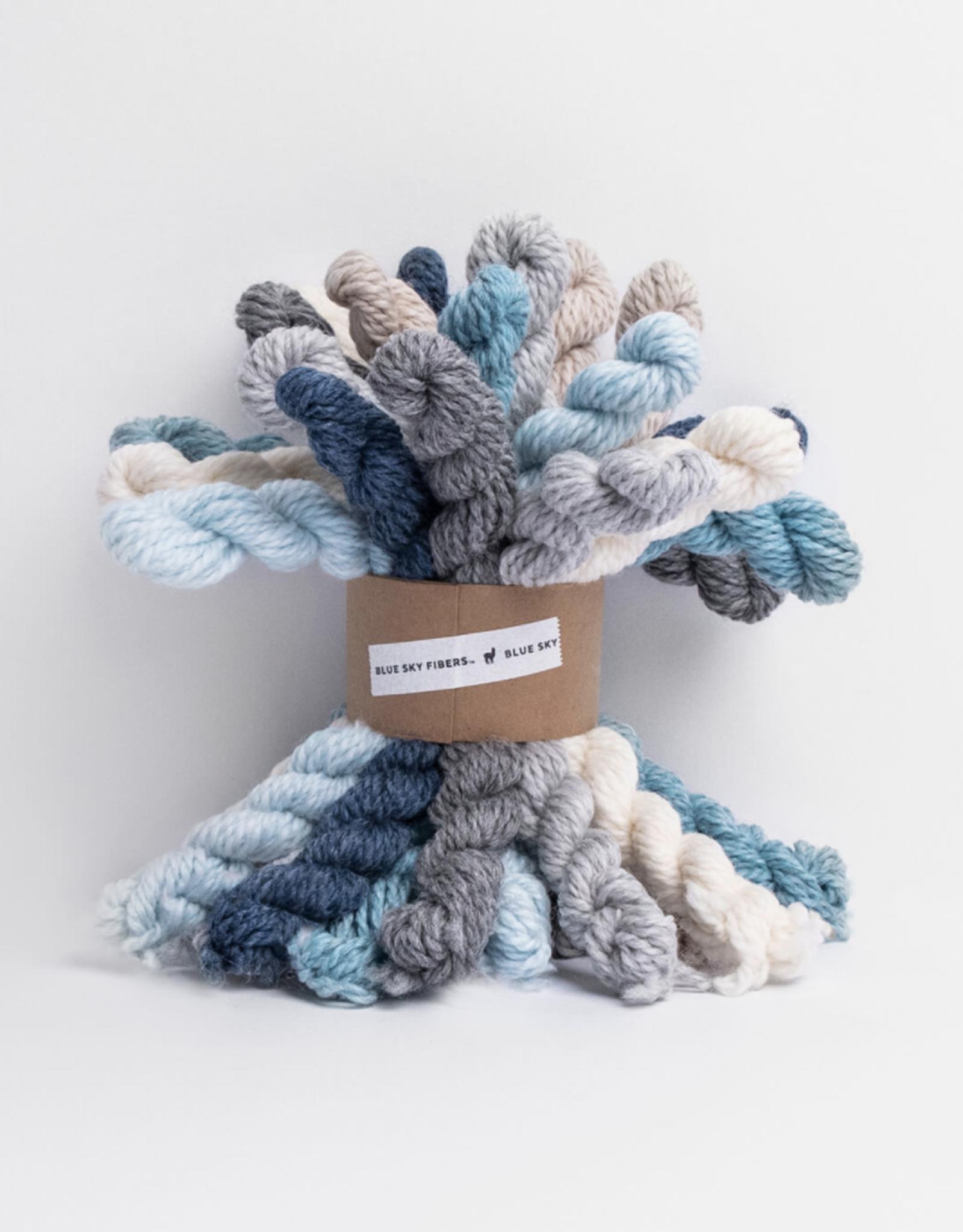 Blue Sky Fibers Woolstok Bundle Kit