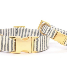 Dog Collar w Gold Hardware