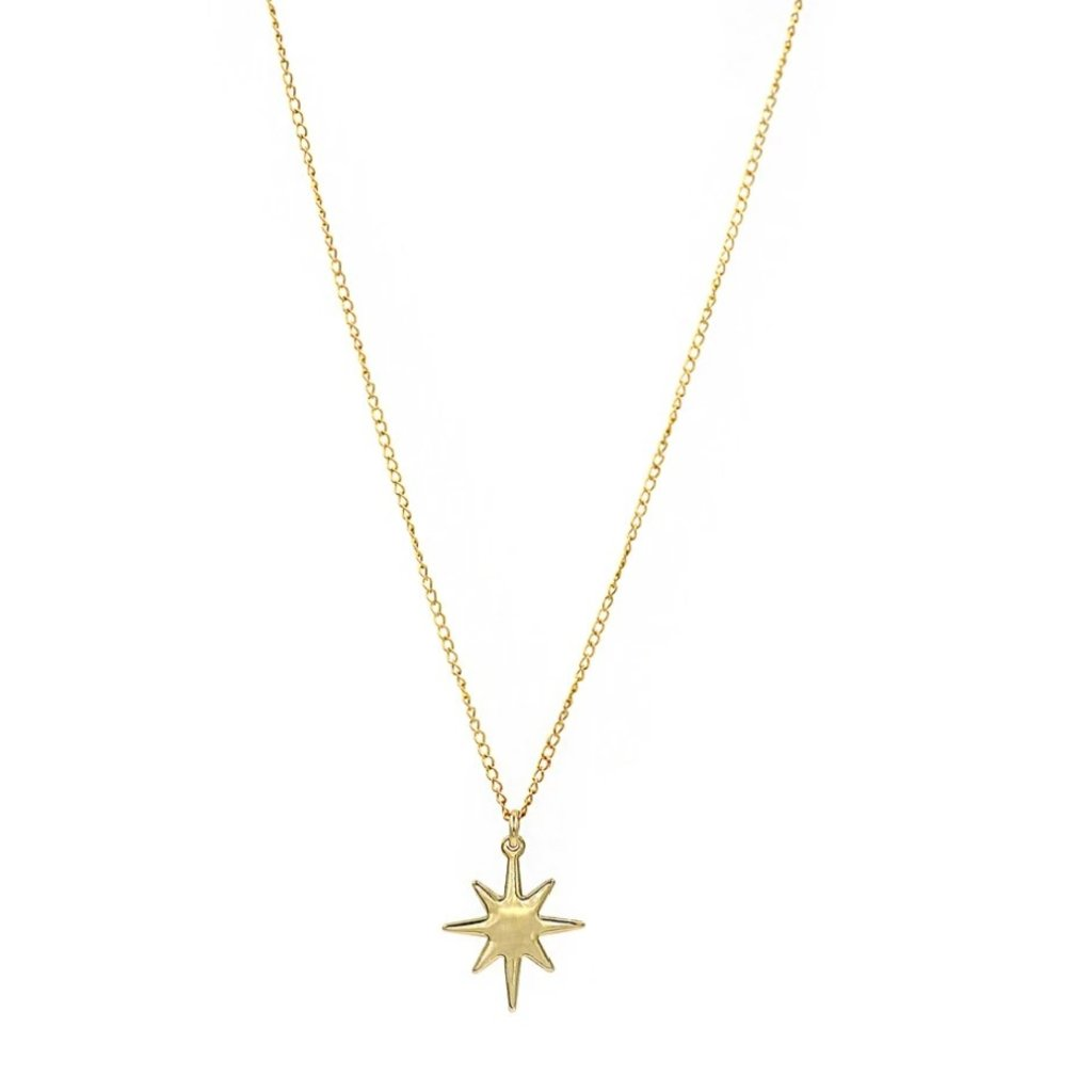 Paradigm Gold Fill Star Charm Necklace