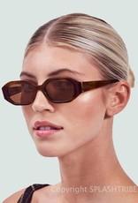Devon Windsor Rome Sunglasses Tortoise