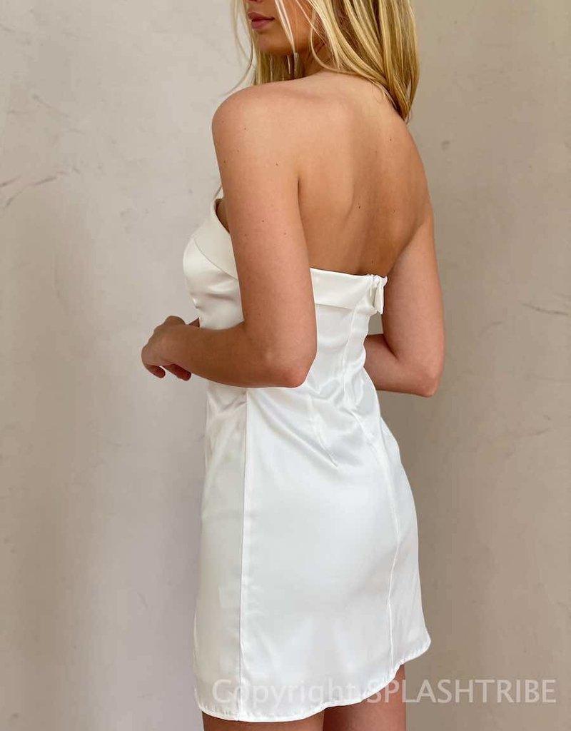 The Audrey Tube Mini Dress